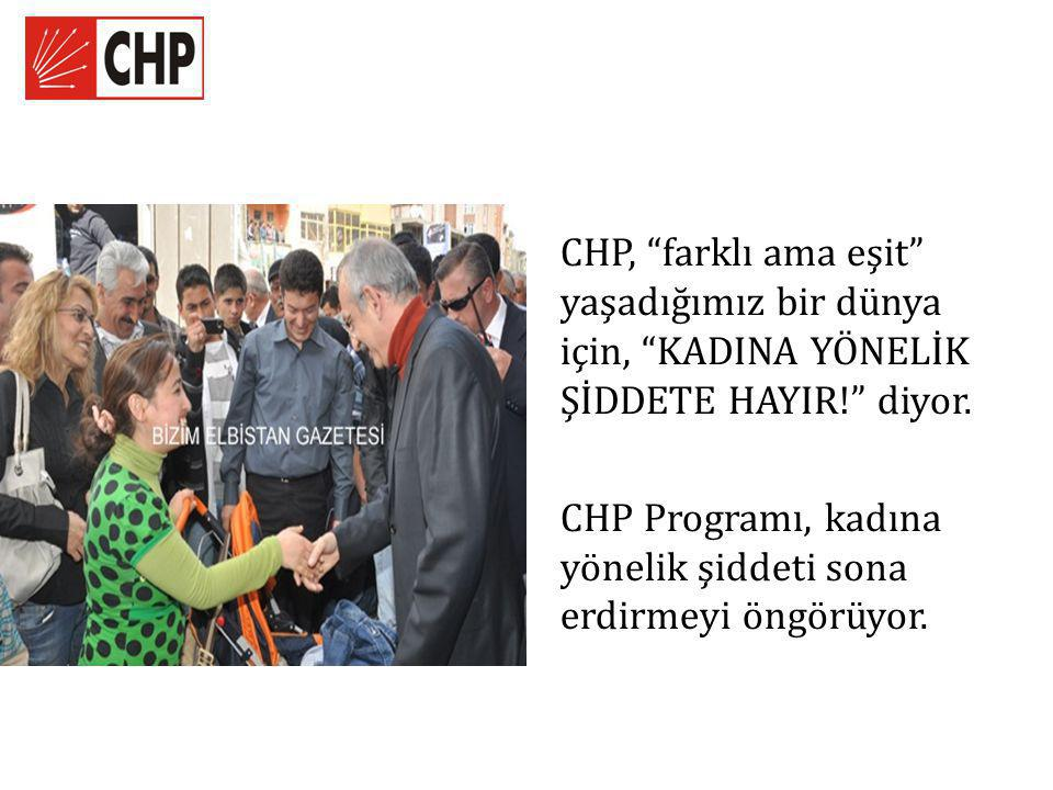 CHP, farklı ama eşit yaşadığımız bir dünya için, KADINA YÖNELİK ŞİDDETE HAYIR! diyor.