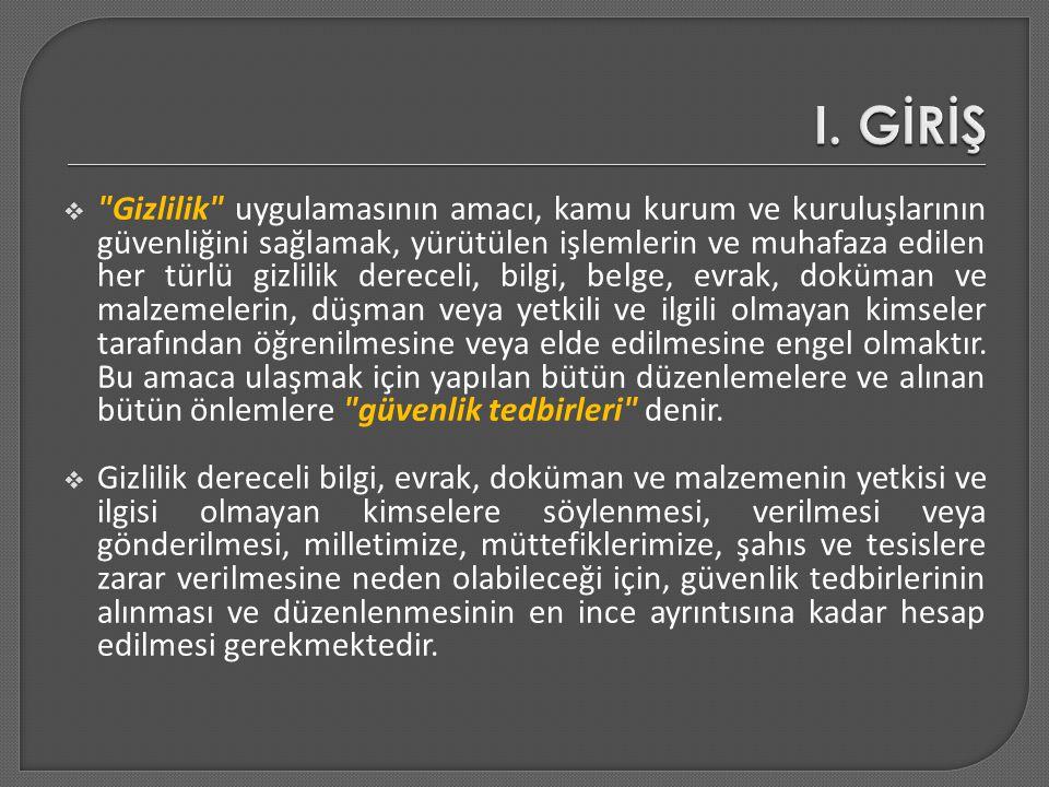 I. GİRİŞ