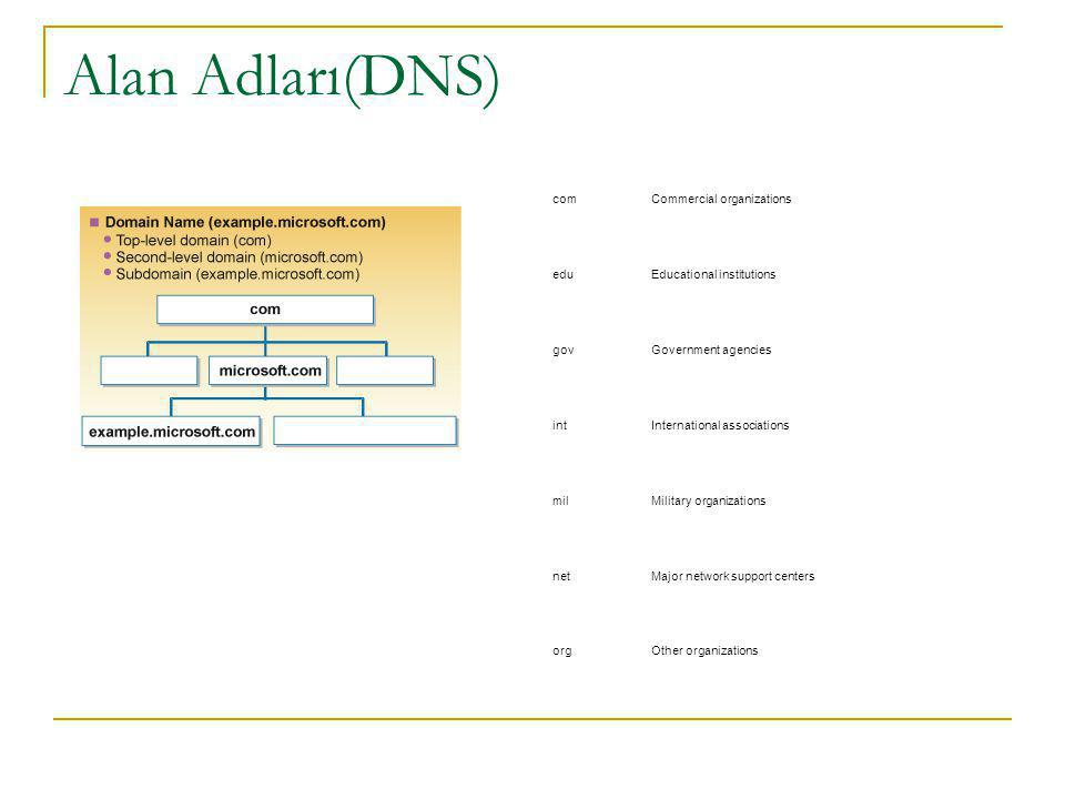 Alan Adları(DNS) com Commercial organizations edu