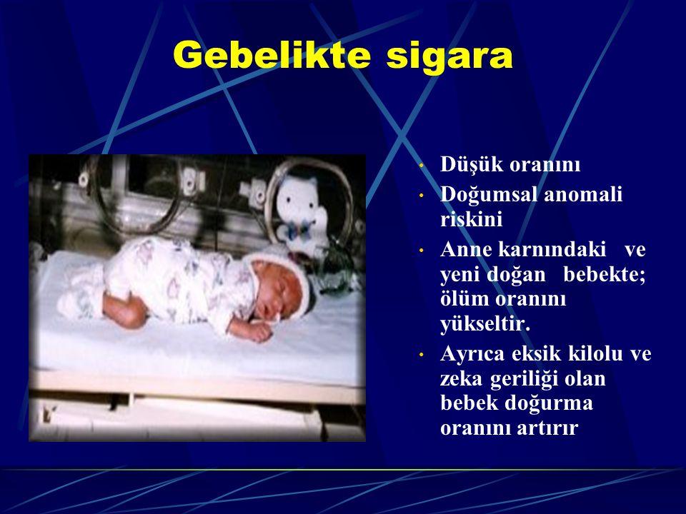 Gebelikte sigara Düşük oranını Doğumsal anomali riskini