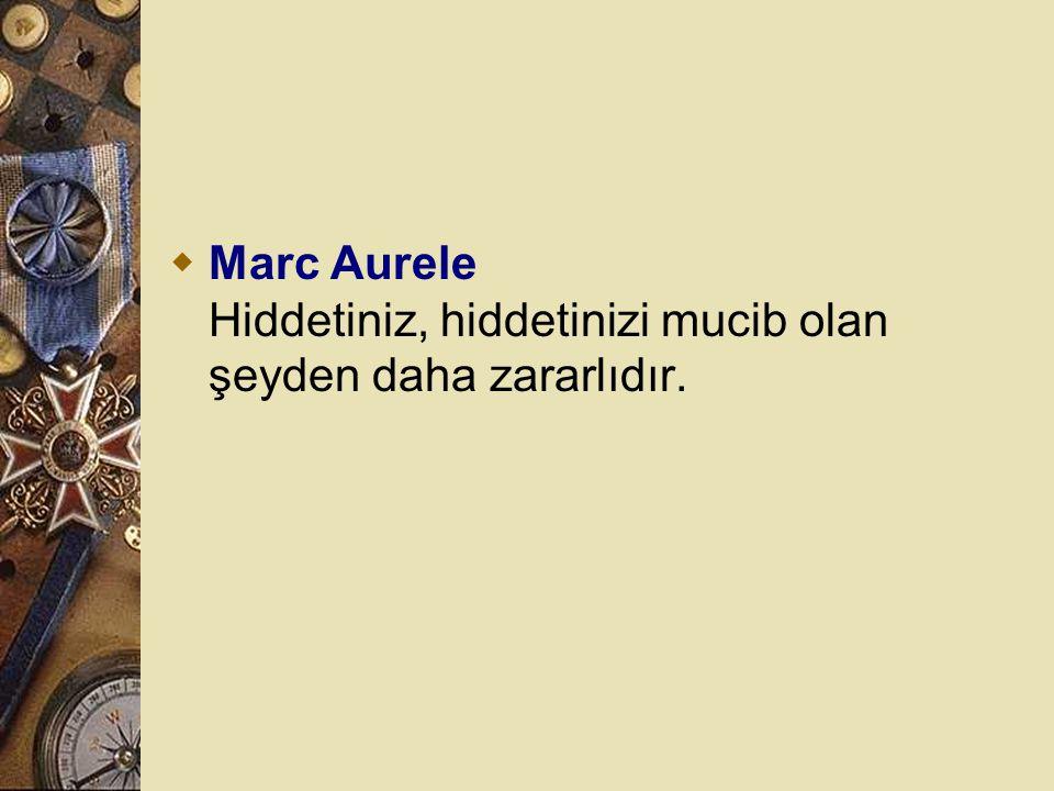 Marc Aurele Hiddetiniz, hiddetinizi mucib olan şeyden daha zararlıdır.