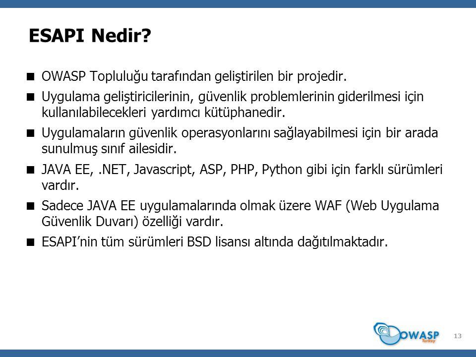 ESAPI Nedir OWASP Topluluğu tarafından geliştirilen bir projedir.