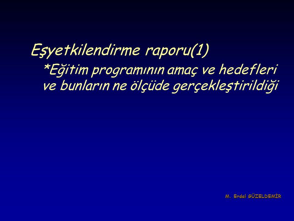 Eşyetkilendirme raporu(1)