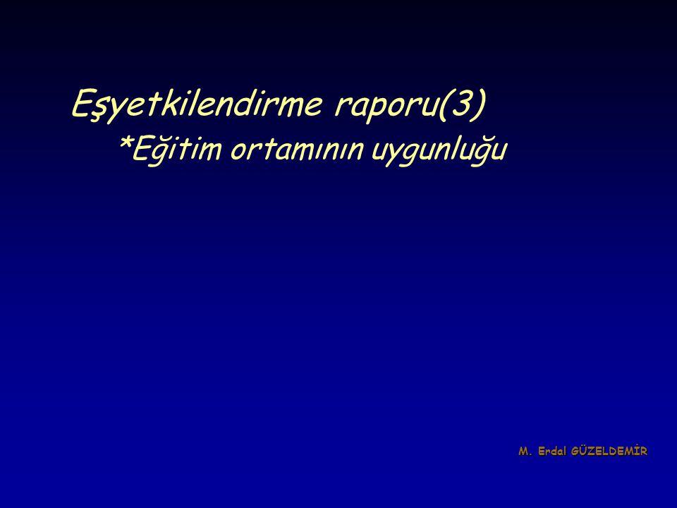 Eşyetkilendirme raporu(3)
