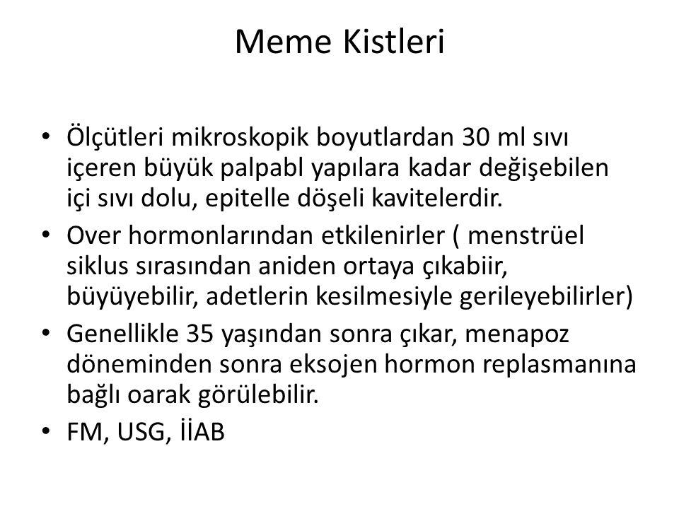 Meme Kistleri