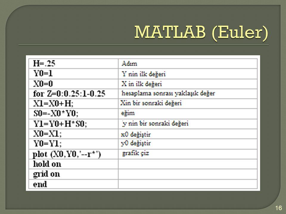 MATLAB (Euler)