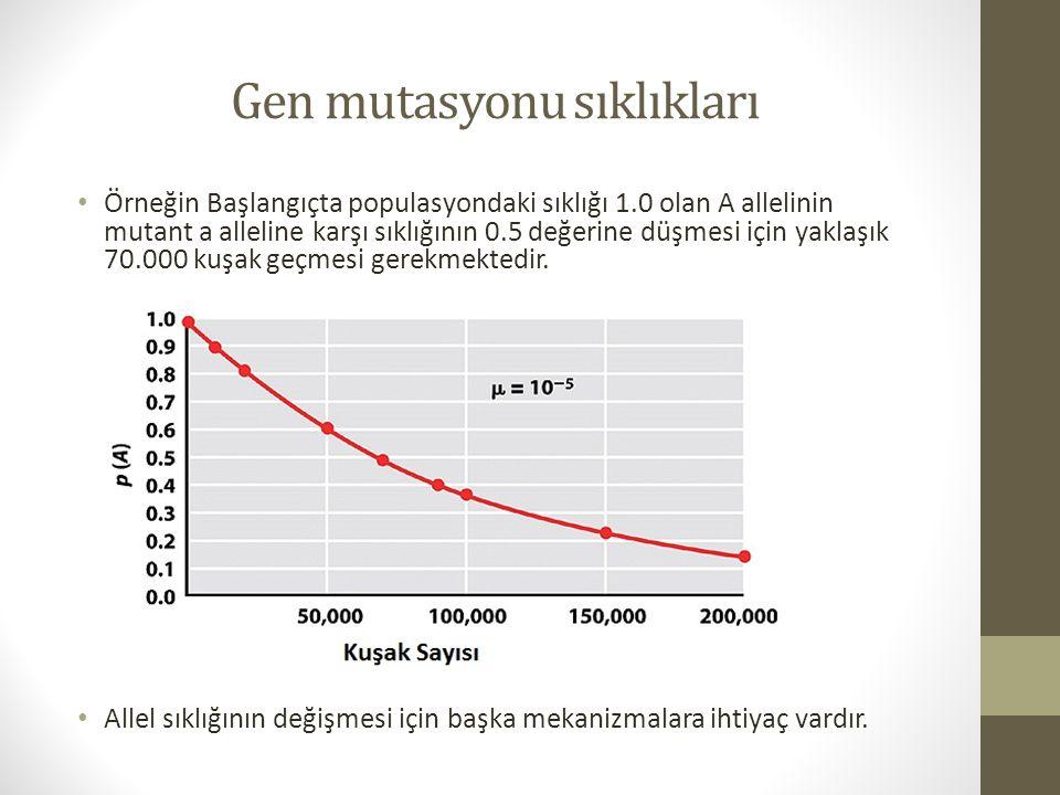 Gen mutasyonu sıklıkları