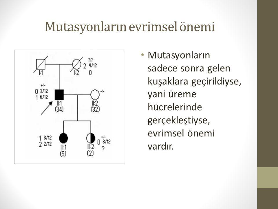 Mutasyonların evrimsel önemi