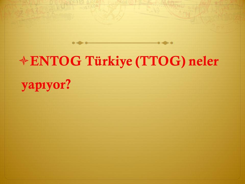 ENTOG Türkiye (TTOG) neler