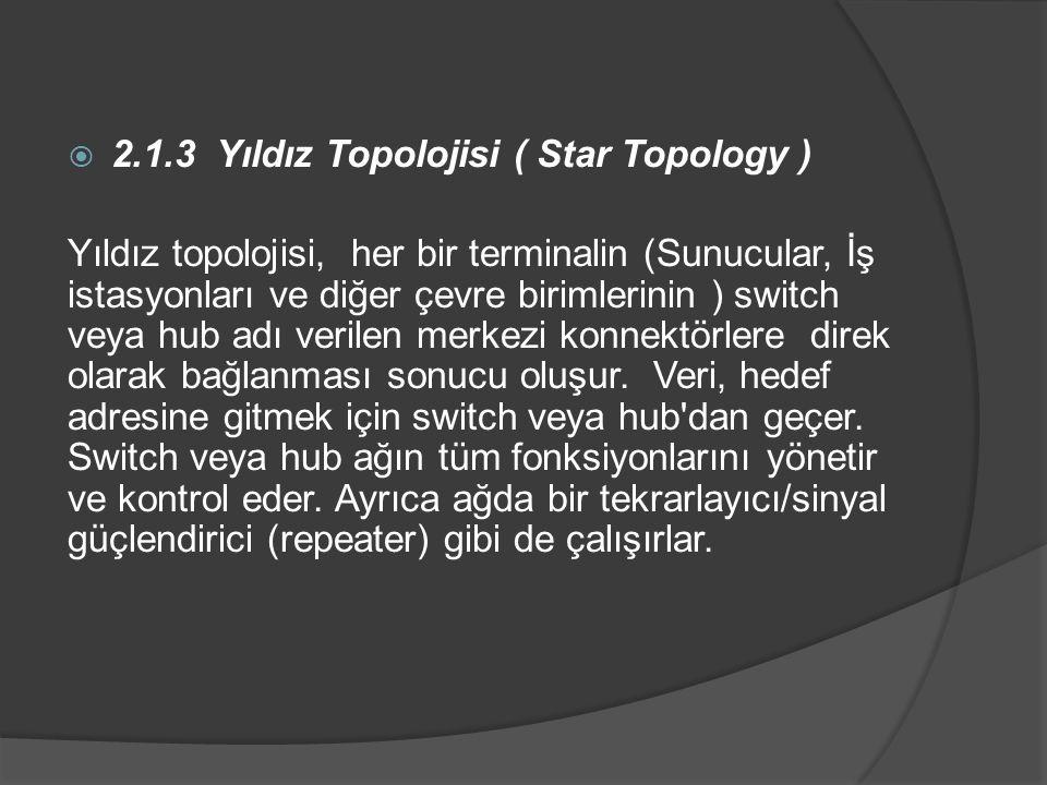 2.1.3 Yıldız Topolojisi ( Star Topology )
