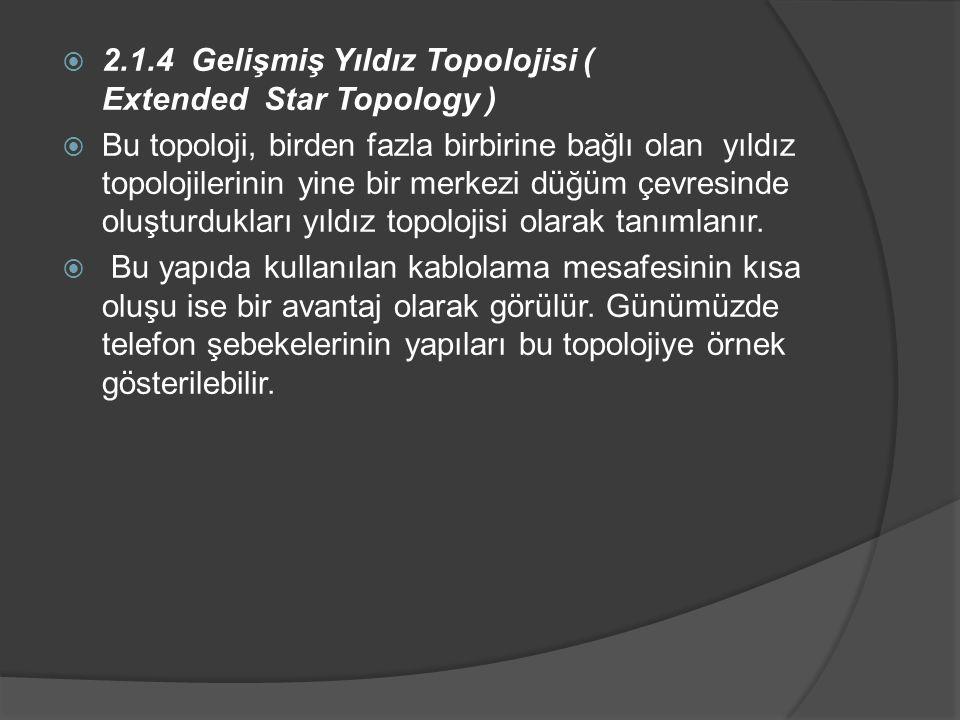 2.1.4 Gelişmiş Yıldız Topolojisi ( Extended Star Topology )