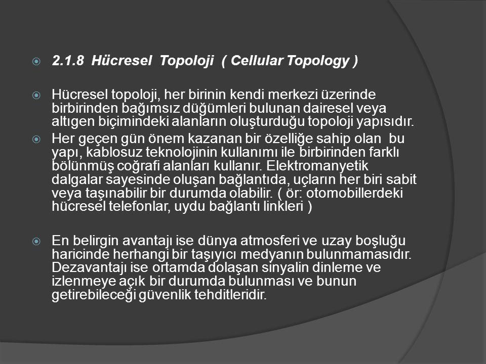 2.1.8 Hücresel Topoloji ( Cellular Topology )