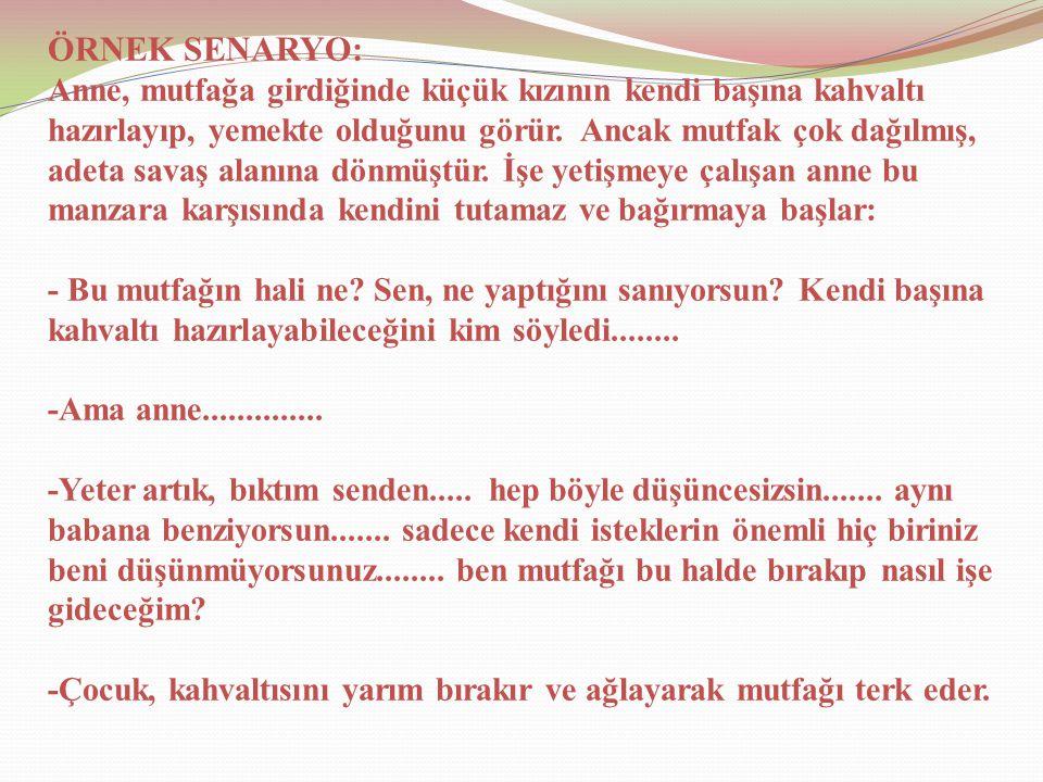 ÖRNEK SENARYO: