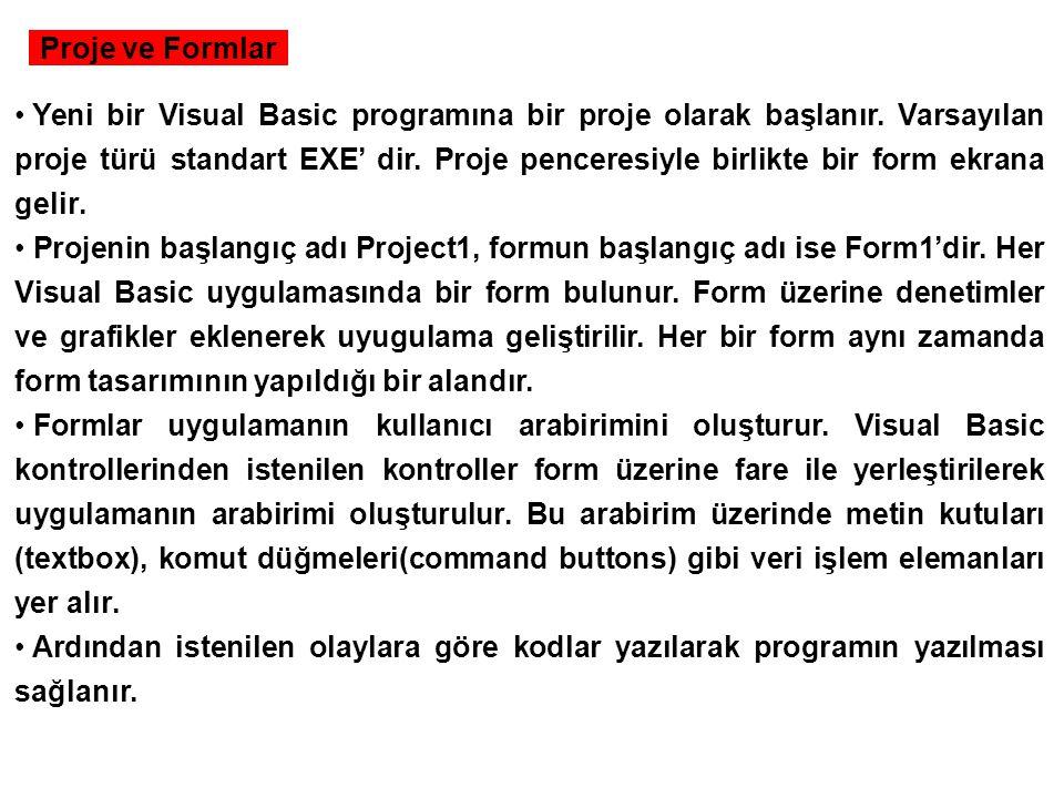 Proje ve Formlar