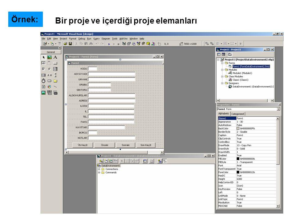 Örnek: Bir proje ve içerdiği proje elemanları