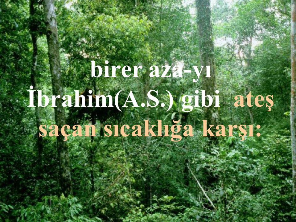 birer aza-yı İbrahim(A.S.) gibi ateş saçan sıcaklığa karşı: