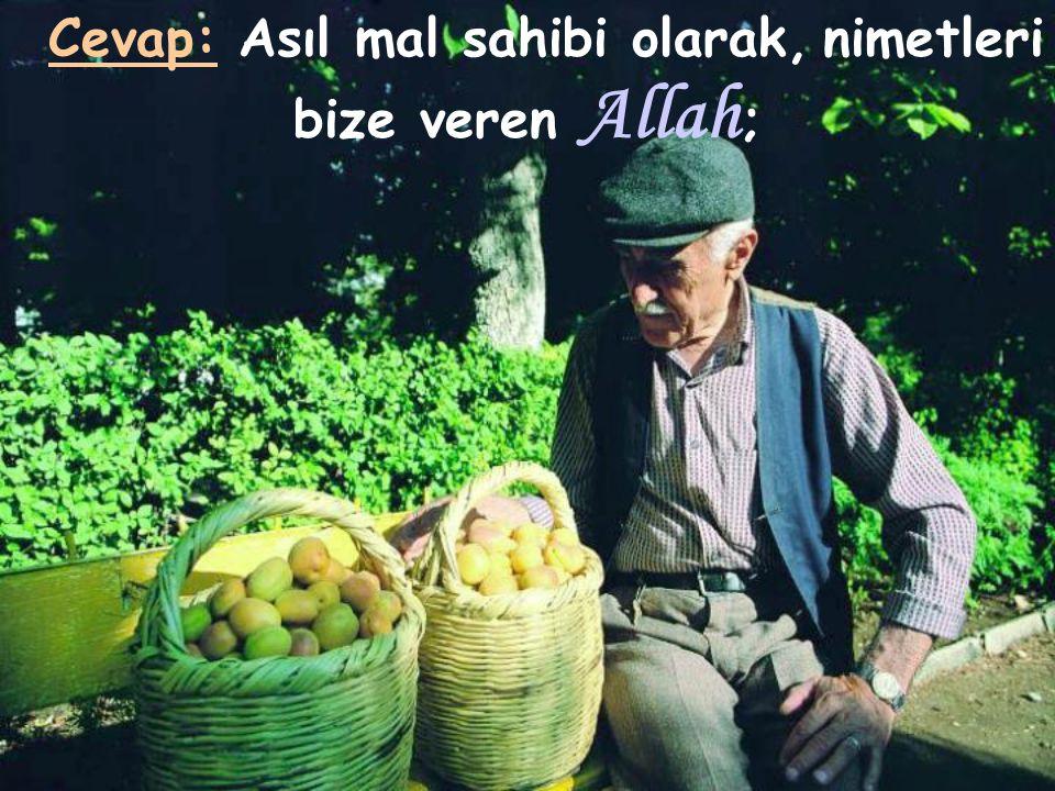 Cevap: Asıl mal sahibi olarak, nimetleri bize veren Allah;