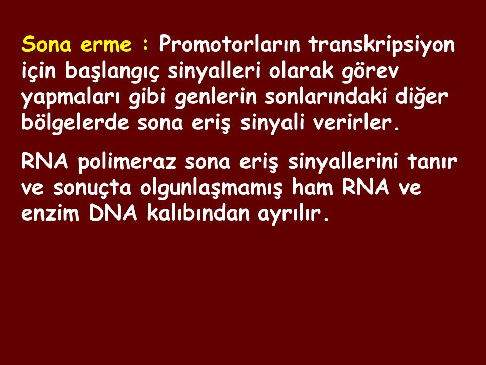 Sona erme : Promotorların transkripsiyon için başlangıç sinyalleri olarak görev yapmaları gibi genlerin sonlarındaki diğer bölgelerde sona eriş sinyali verirler.