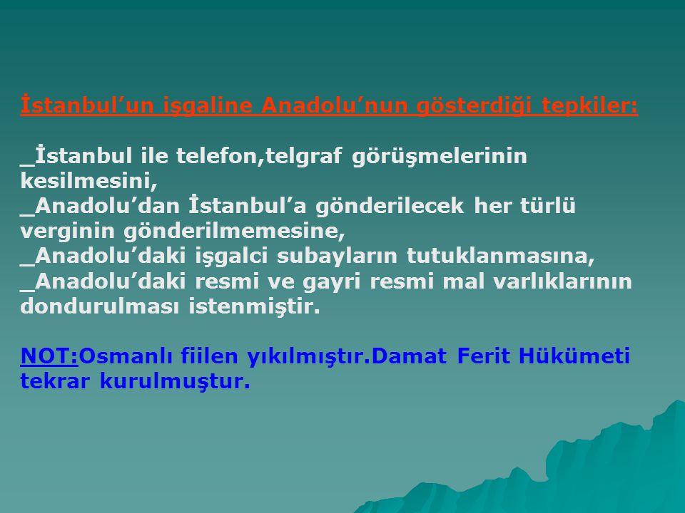 İstanbul'un işgaline Anadolu'nun gösterdiği tepkiler: