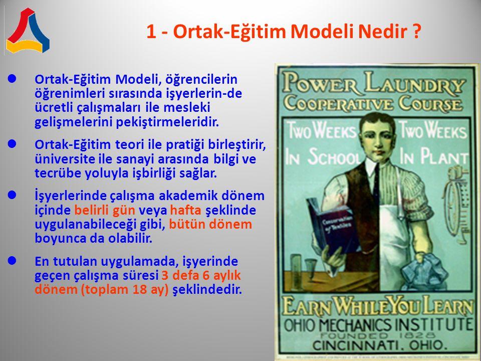 1 - Ortak-Eğitim Modeli Nedir