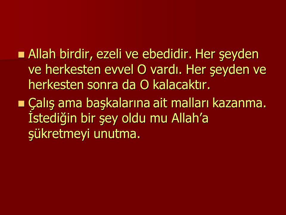 Allah birdir, ezeli ve ebedidir. Her şeyden ve herkesten evvel O vardı