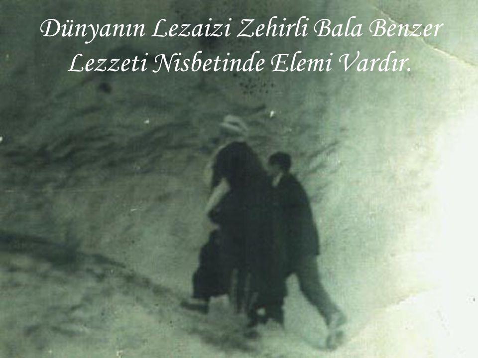 Dünyanın Lezaizi Zehirli Bala Benzer Lezzeti Nisbetinde Elemi Vardır.