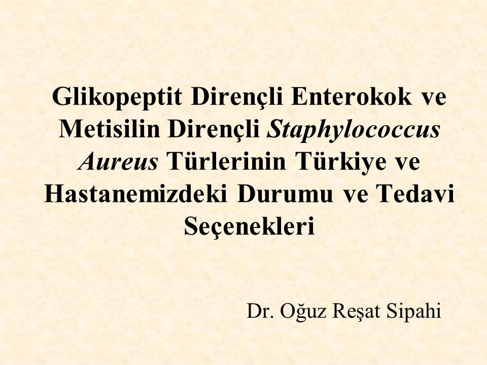 Glikopeptit Dirençli Enterokok ve Metisilin Dirençli Staphylococcus Aureus Türlerinin Türkiye ve Hastanemizdeki Durumu ve Tedavi Seçenekleri