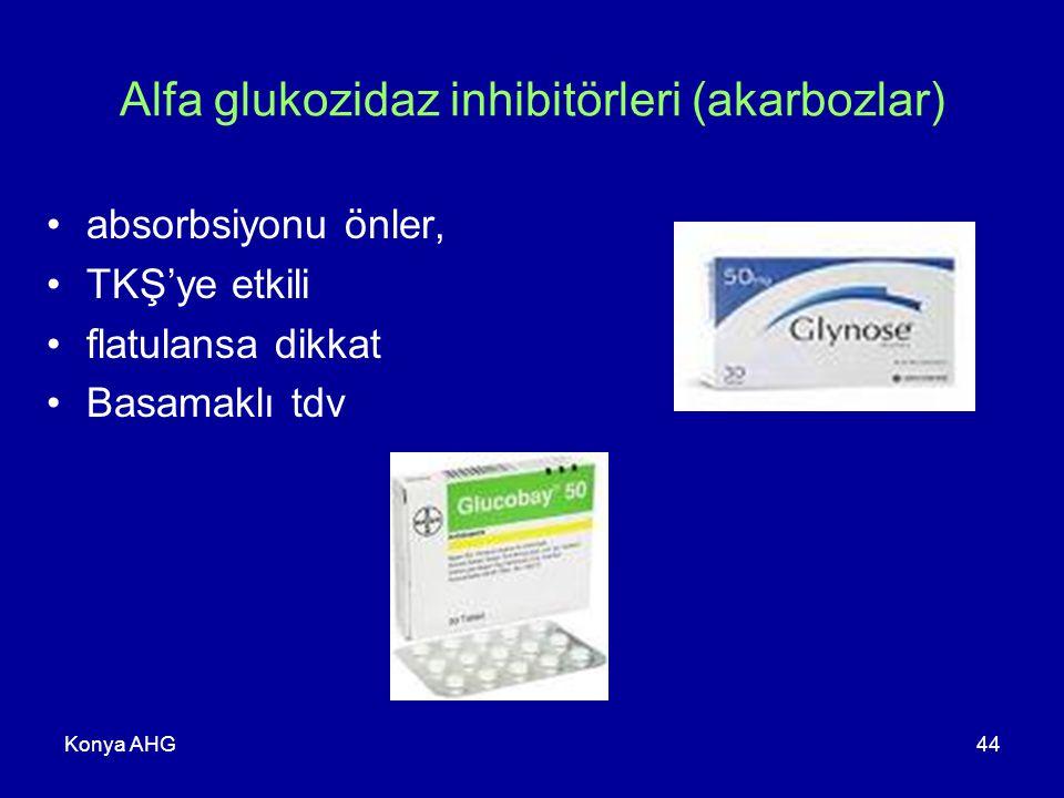 Alfa glukozidaz inhibitörleri (akarbozlar)