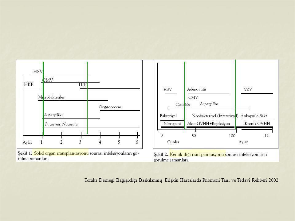Toraks Derneği Bağışıklığı Baskılanmış Erişkin Hastalarda Pnömoni Tanı ve Tedavi Rehberi 2002