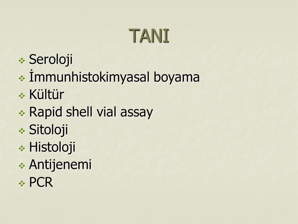 TANI Seroloji İmmunhistokimyasal boyama Kültür Rapid shell vial assay