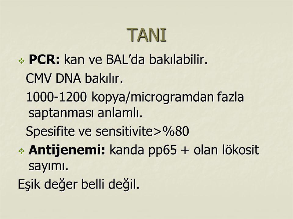 TANI PCR: kan ve BAL'da bakılabilir. CMV DNA bakılır.