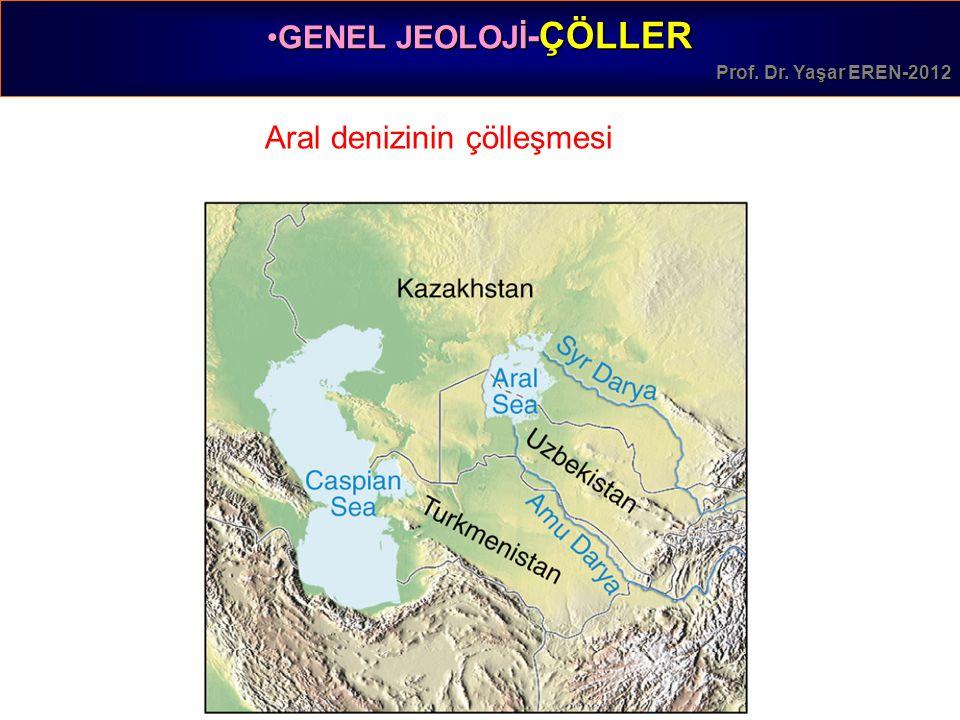 Aral denizinin çölleşmesi