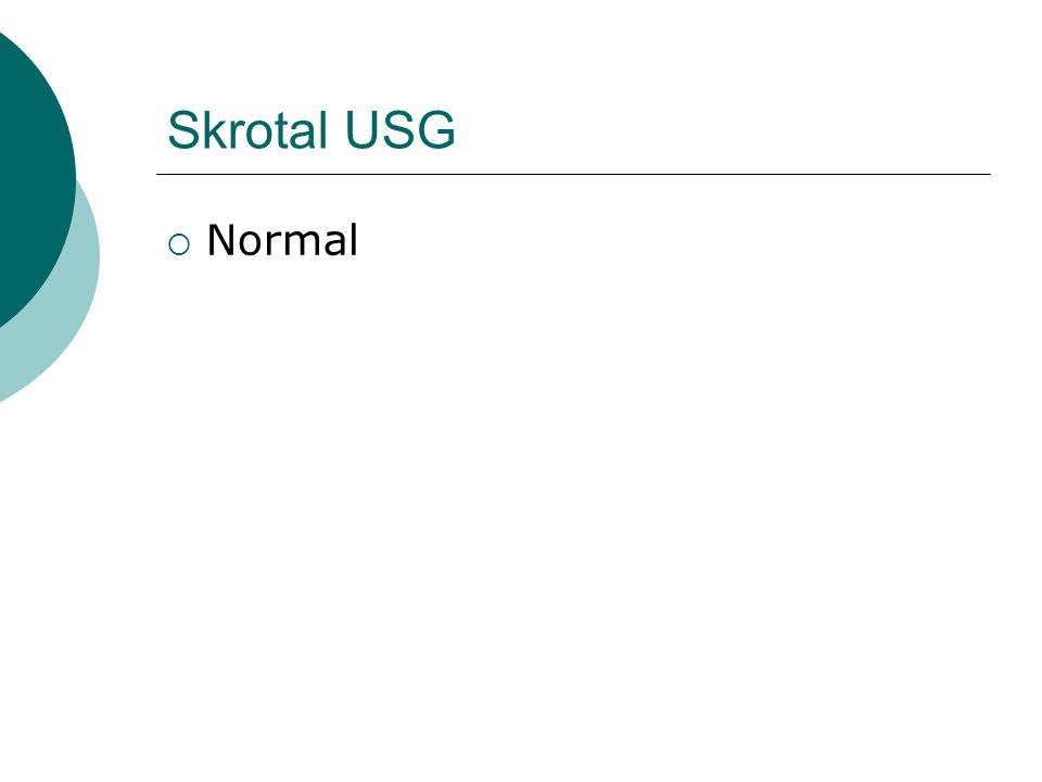 Skrotal USG Normal