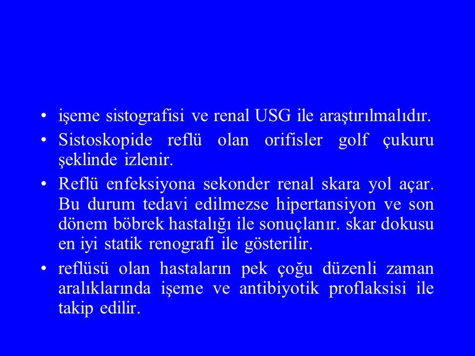işeme sistografisi ve renal USG ile araştırılmalıdır.