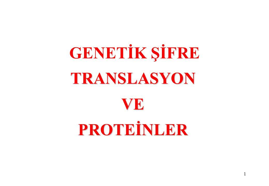 TRANSLASYON VE PROTEİNLER