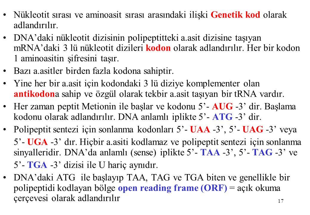 Nükleotit sırası ve aminoasit sırası arasındaki ilişki Genetik kod olarak adlandırılır.