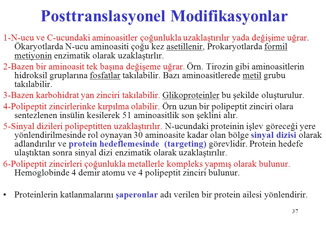 Posttranslasyonel Modifikasyonlar