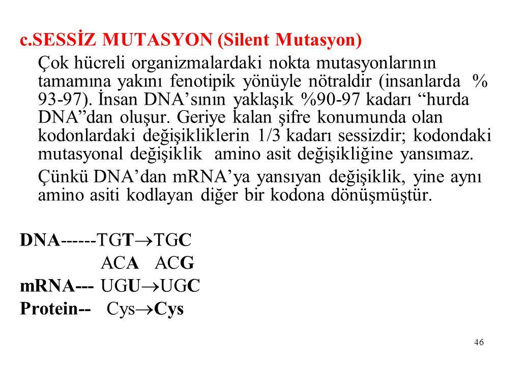 c.SESSİZ MUTASYON (Silent Mutasyon)