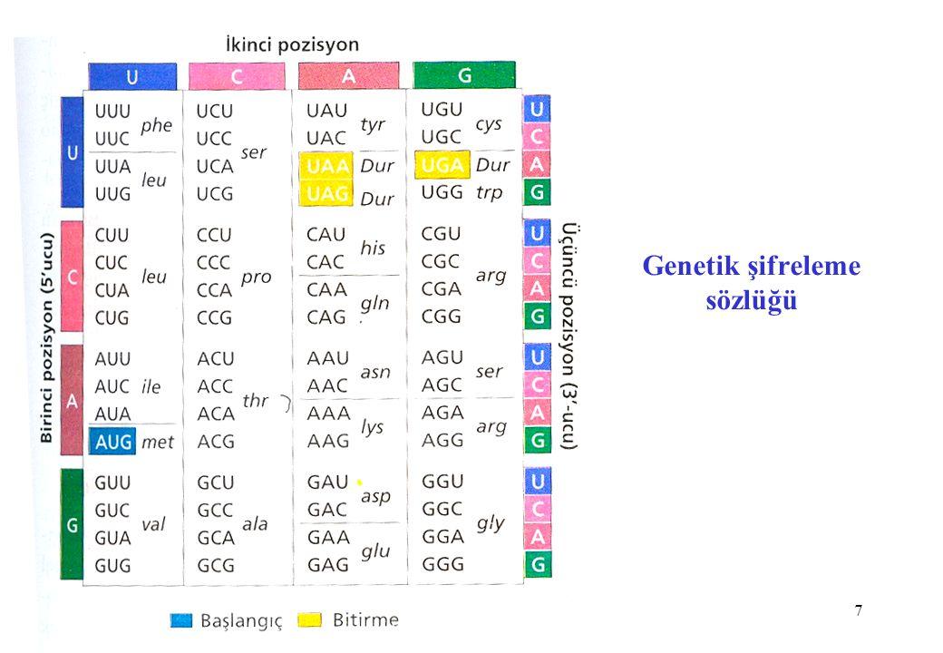 Genetik şifreleme sözlüğü
