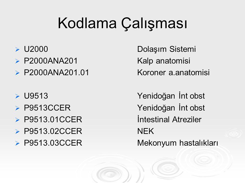 Kodlama Çalışması U2000 Dolaşım Sistemi P2000ANA201 Kalp anatomisi