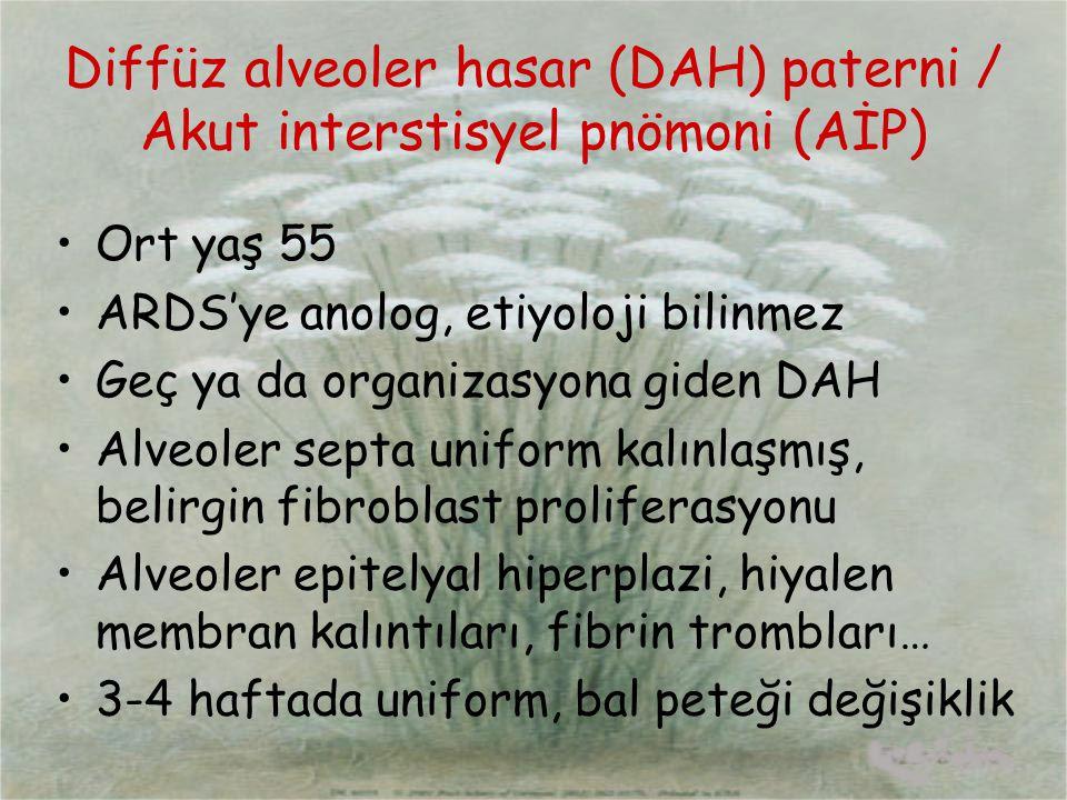 Diffüz alveoler hasar (DAH) paterni / Akut interstisyel pnömoni (AİP)