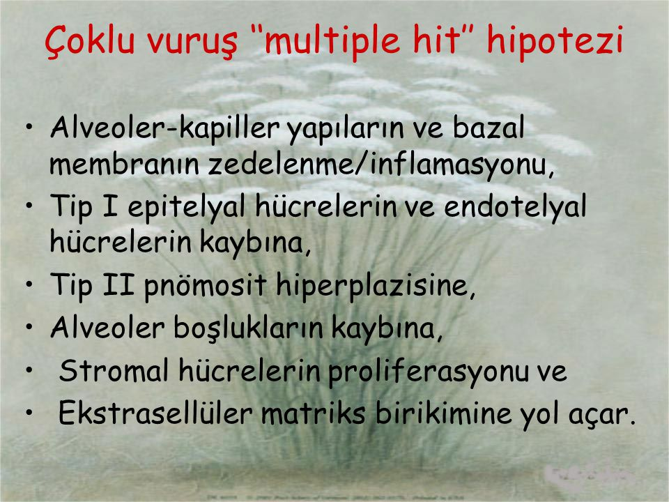 Çoklu vuruş ''multiple hit'' hipotezi