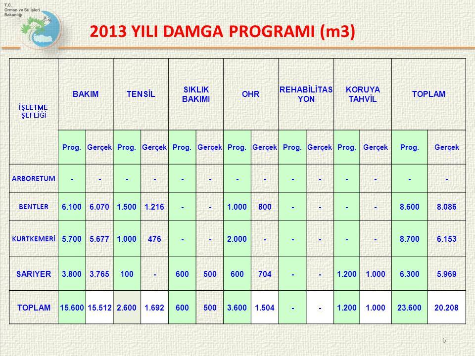 2013 YILI DAMGA PROGRAMI (m3)