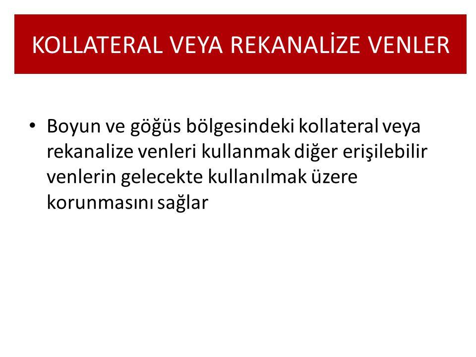 KOLLATERAL VEYA REKANALİZE VENLER