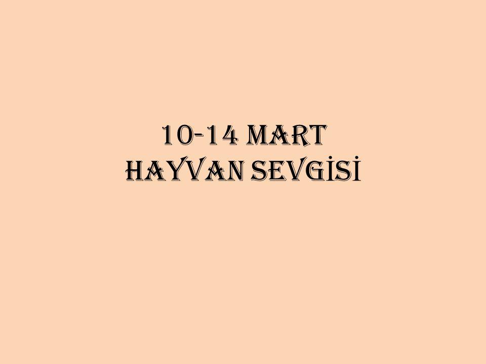 10-14 MART HAYVAN SEVGİSİ