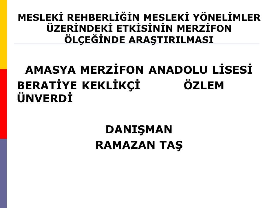 AMASYA MERZİFON ANADOLU LİSESİ