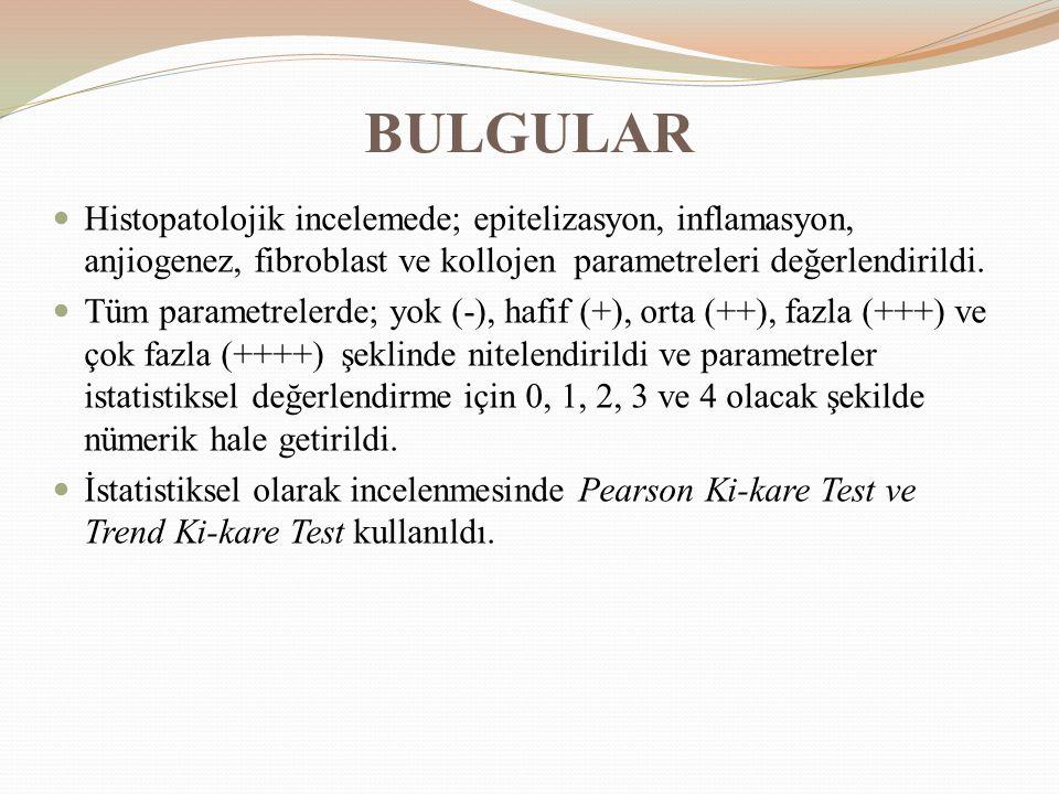 BULGULAR Histopatolojik incelemede; epitelizasyon, inflamasyon, anjiogenez, fibroblast ve kollojen parametreleri değerlendirildi.