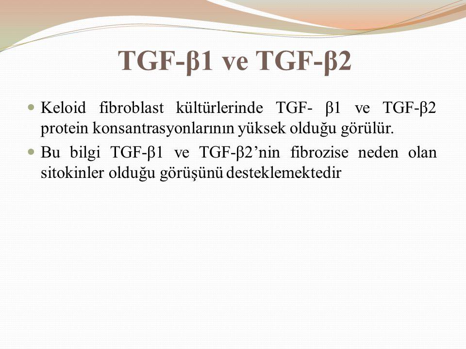TGF-β1 ve TGF-β2 Keloid fibroblast kültürlerinde TGF- β1 ve TGF-β2 protein konsantrasyonlarının yüksek olduğu görülür.