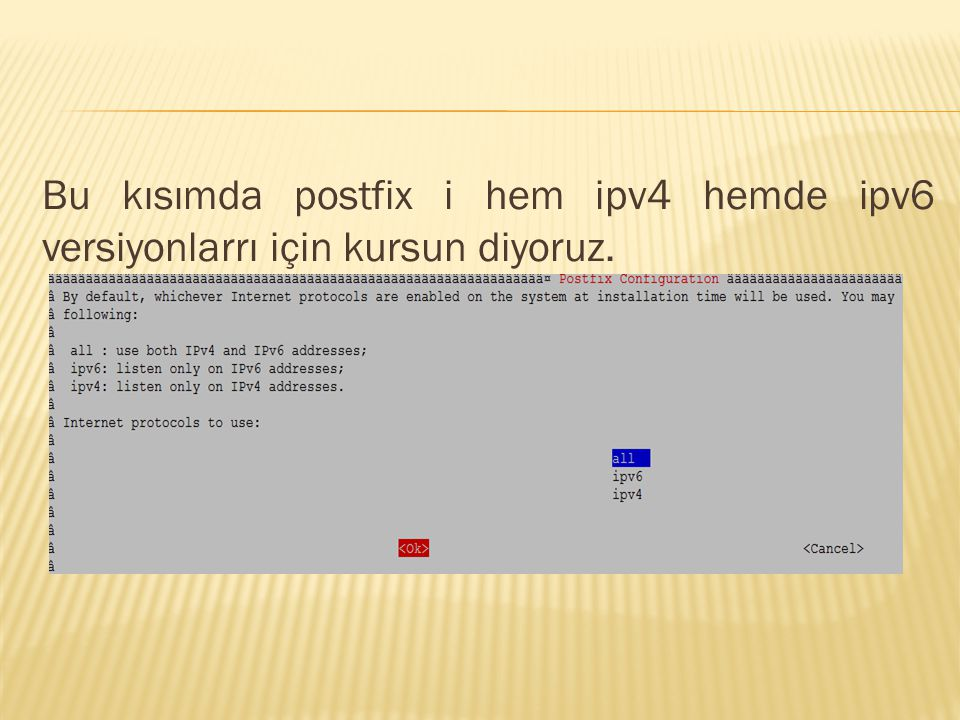 Bu kısımda postfix i hem ipv4 hemde ipv6 versiyonlarrı için kursun diyoruz.