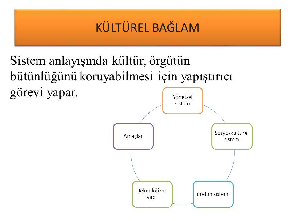 Sosyo-kültürel sistem
